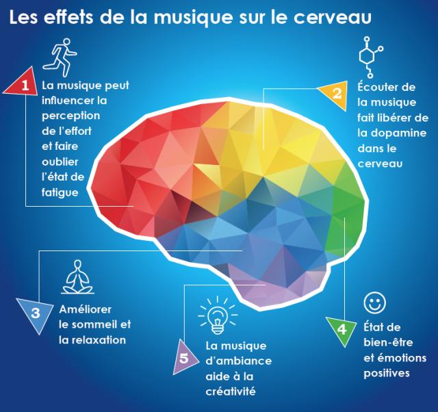 schéma-musique-cerveau
